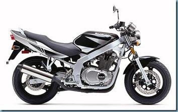 GS500-2002