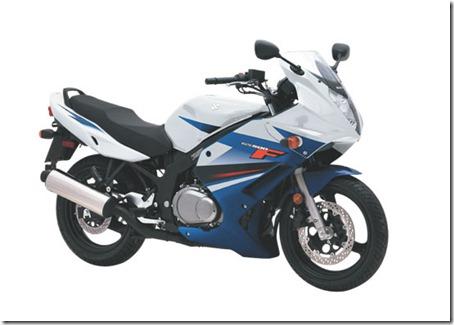2010-Suzuki-GS500Fa-small