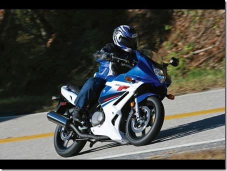 2010-Suzuki-GS500Fb-small